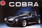 Shelby Cobra2 Pic.jpg